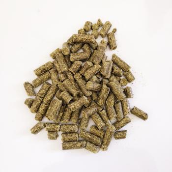Bonbon pour chevaux HDCP Ortie-Miel